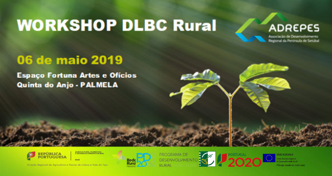WORKSHOP DLBC RURAL